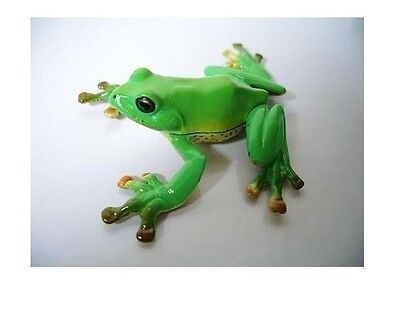 Kaiyodo Natural Monuments of Japan Rhacophorus arboreus Tree Frog Mini Figurine