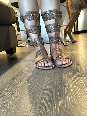 6408e4453 Sam Edelman Tall Gladiator Sandals Brown Leather Studded Womens US size 8