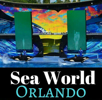 Seaworld Orlando Florida Tickets $69   A Promo Discount Tool