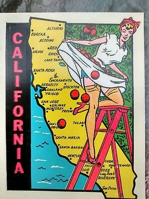 Vintage CALIFORNIA State Travel Decal Souvenir Authentic 1950s RV Luggage Camper