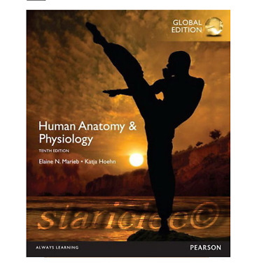 Human anatomy and physiology marieb 10th edition ebookpdf global human anatomy and physiology global 10th edition fandeluxe Images
