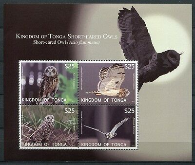 Tonga 2012 Eulen Owls Vögel Birds Block 57 Postfrisch MNH