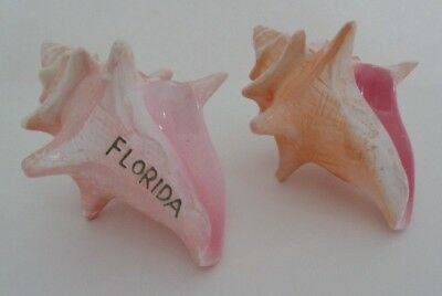 Vintage Sea Shell Salt and Pepper Shakers Florida Souvenir