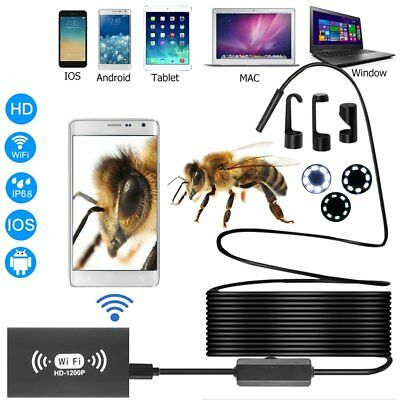1-10M 8mm Wireless Endoscope WiFi HD 1200P Hard Cable 8LED for IOS Android WN