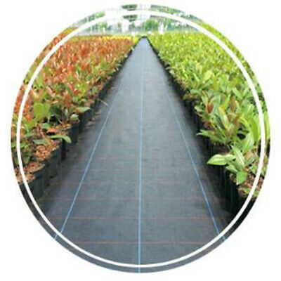 Black Landscape Fabric Roll Garden Weed Control Barrier 2x5m / 1x10m Size