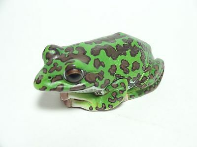 Retired Kitan Club Japan forest green tree frog Toad mini pvc figurine figure