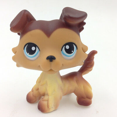 Hasbro Littlest Pet Shop Toys LPS Yellow Brown Hair Collie Dog Blue Eyes Puppy G