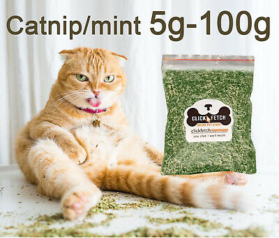 1-5 Pack Pure Natural Catnip - Cats, Kittens, playful cat products puss