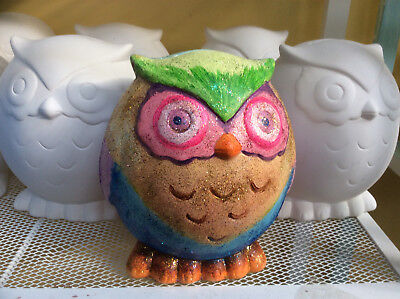 Ceramic Bisque Ready to Paint Your Own Pottery Large Owl Money Box Bank