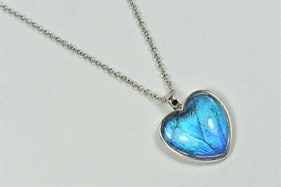 Blue Morpho Butterfly Wing Heart Pendant Necklace Silver Finish Jewelry