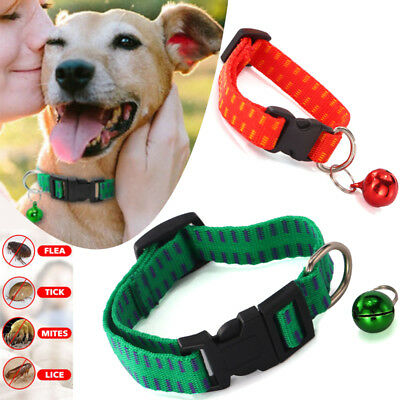 Dog Pet Collar Anti Flea Egg Tick Mosquitoe Control Remedy Treatment Adjustable