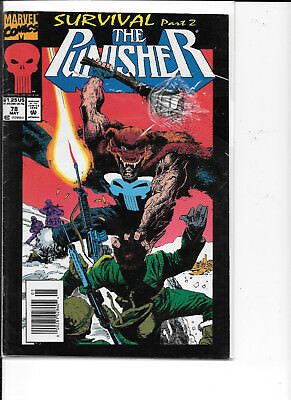 Comics The Punisher May 1978 Survival Part 2