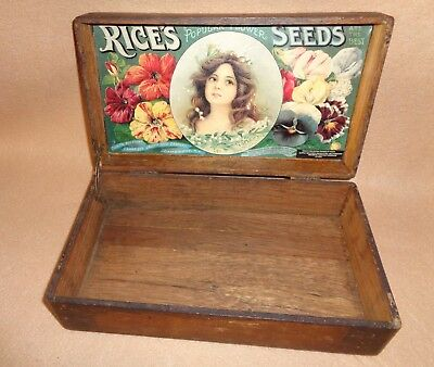 old general store antique advertising Rice's pretty girl graphics seed box