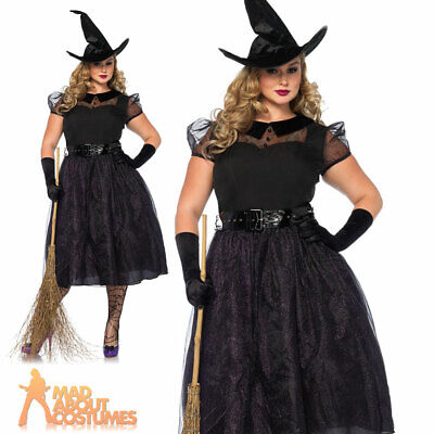 9fdc0f909 Ladies Plus Size Witch Darling Witches Costume Halloween Horror Fancy Dress