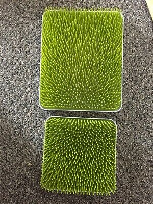 Two Baby Bottle Drying Rack Countertop Green Grass Tray2 Large Small Set Lot