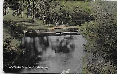 Greenock, In the Woods at the Cut; posted 1916 to Hawick