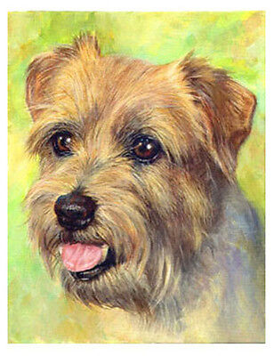 artav Norfolk Terrier Art Print of Original Acrylic