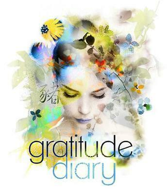 2019 Gratitude Diary by Melanie Spears Paperback Book Free Shipping!