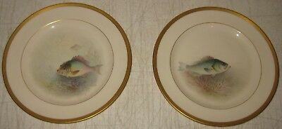 2 Antique LENOX WILLIAM H MORLEY Painted Fish CABINET Plates - SEA BASS & PORGY