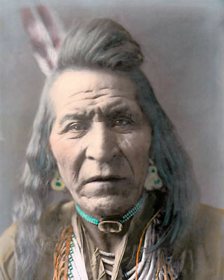 buffalo horn native american indian comanche 1872 8x10 hand color