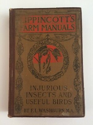 Lippincott's Farm Manual Injurious Insects and Useful Birds