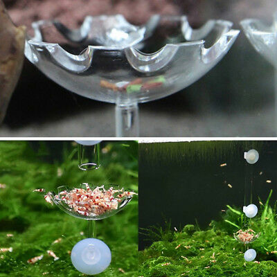 shrimp feeding dish Tool Clear Acrylic Tray Container food case water aquariums