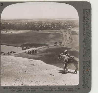 Assiut largest City of Upper Egypt Underwood Stereoview c1900