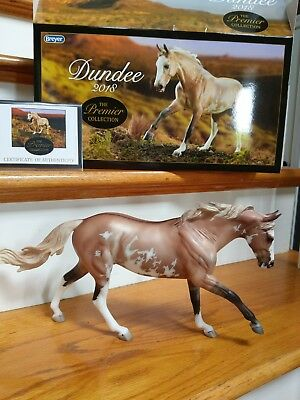 Breyer Premier Club Dundee, New Mold!