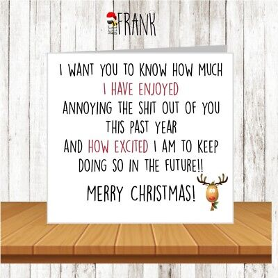 Funny, rude, cute, sarcastic, comedy, banter CHRISTMAS CARD for partner friend