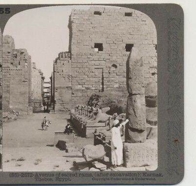 Avenue of Rams (After Excavation) Karnak Thebes Egypt Underwood Stereoview c1900