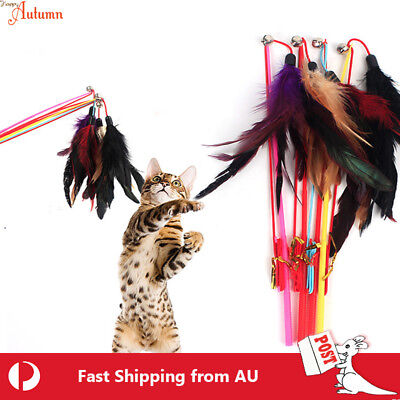 Cat  Play Feather Teaser Wand Toy Interactive Stick Kitten Pet Fun Wire Beads 5