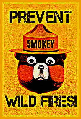 """Prevent Wild Fires Smokey Bear Metal Sign 8""""x12"""" Forest Service Classic Image"""