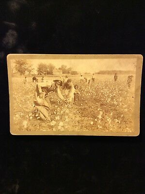 Antique Pre-civil War Cabinet Photo Negro Slaves Picking Cotton Russel Bros. Ala