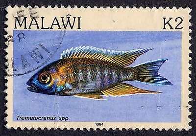 Malawi: Fishes; Fairy Cichlid 2K value only; fine used