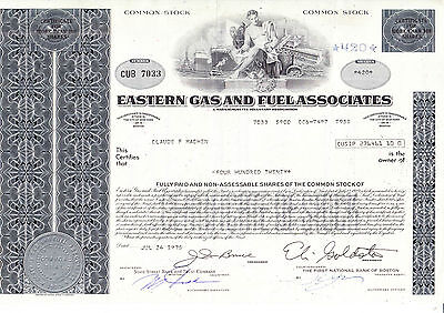 Eastern Gas and Fuel Associates, 1975