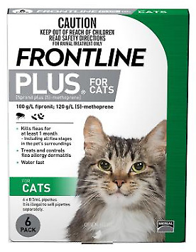 Frontline Plus for Cats 6 pack - Expiry October 2019