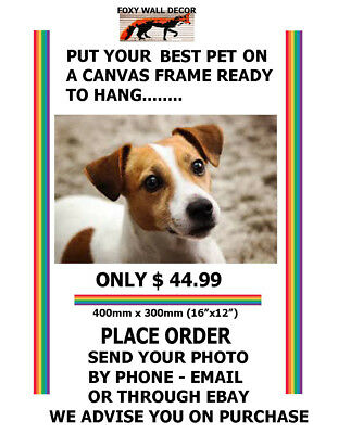 best pet photo art print on to canvas framed ready to hang cat dog bird pics
