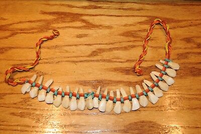 Native American Indian Warrior Buffalo Tooth Necklace Vintage Twenty Two  Teeth