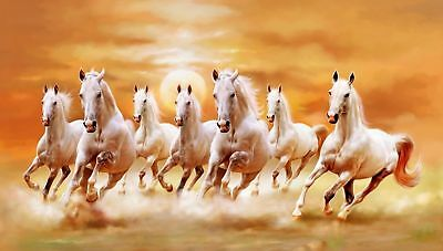 Running horse , Animal  High Quality wall Art poster Choose your Size