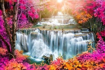 Falls, nature, Pink leaves. falls High Quality wall Art poster Choose your Size