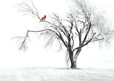 Bird , art,  tree  High Quality wall Art poster Choose your Size
