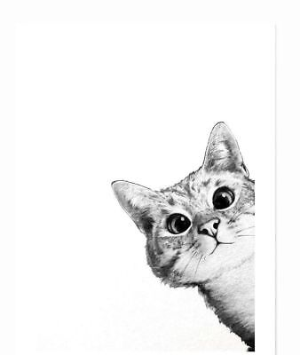 Cat, animal, funny ,  High Quality wall Art poster Choose your Size
