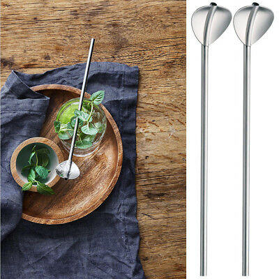 2 Pcs Stainless Steel Metal Drinking Straw Reusable Straws Cocktail Spoons Set