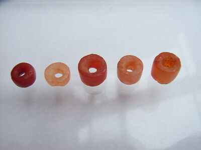 5 Ancient Neolithic Carnelian Beads, Stone Age, RARE !!
