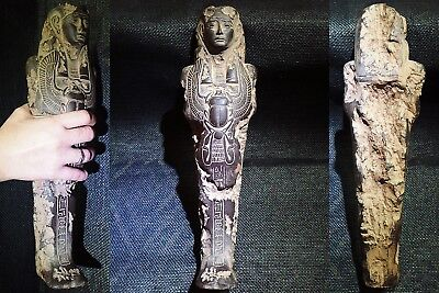 EGYPTIAN ARTIFACT ANTIQUITIES Gemenefherbak Ushabti Shawabti Shabti 664-525-BC