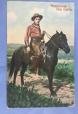 """Vintage Postcard OLD WEST, COWBOYS """"WATCHING THE CATTLE """"RARE AHCo. Cowboys#1016"""