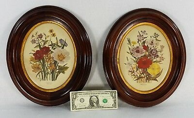 Pair of Victorian Oval Walnut Deep Well Frames with Prints of English Flowers