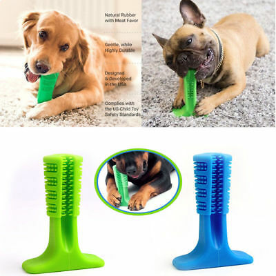 UK Stock 2019 Bristly Brushing Stick World's Most Effective Toothbrush for Dogs