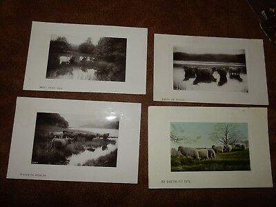 x9 Early Farming animal themed postcards - Cattle / Sheep / Chickens / Donkeys