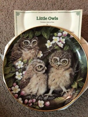 New Little Owls Baby Owls Danbury Mint Collector Plate
